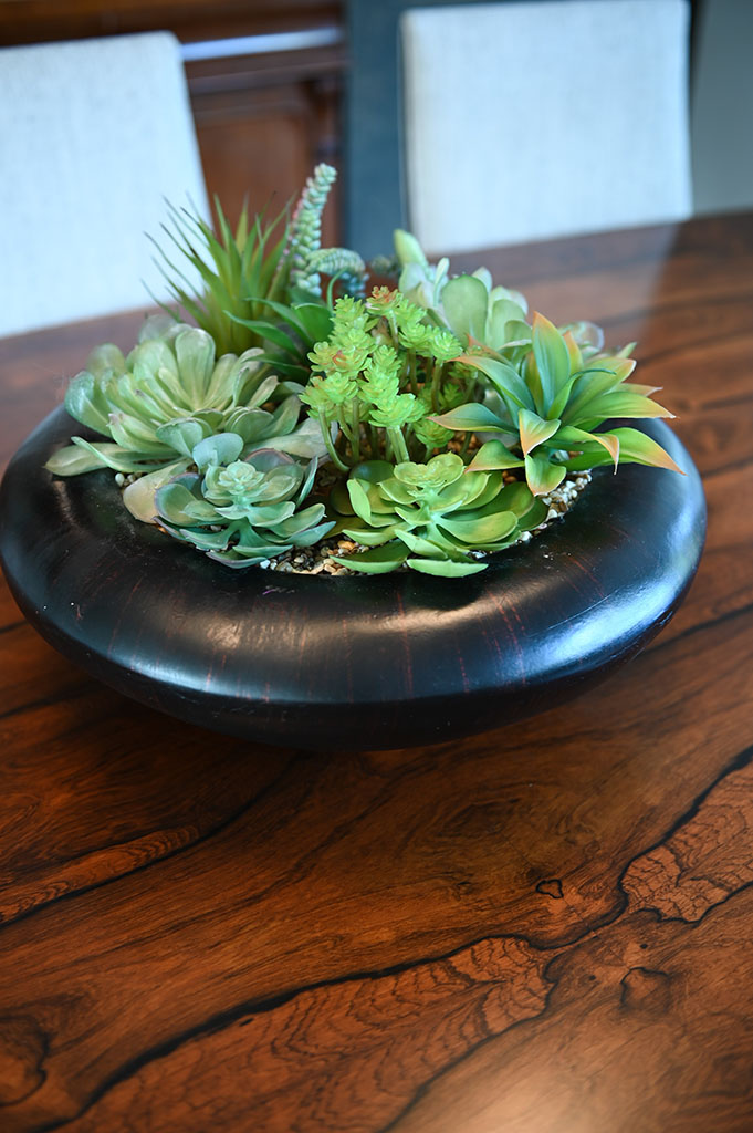 Dining Table Succulents