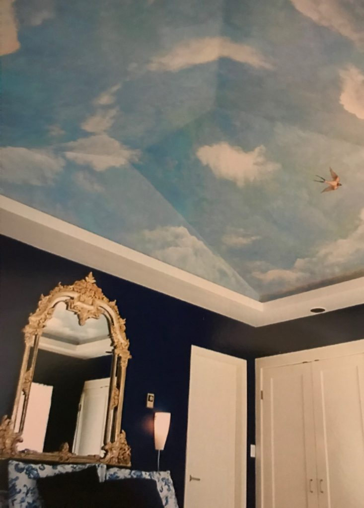 Sky Mural Ceiling